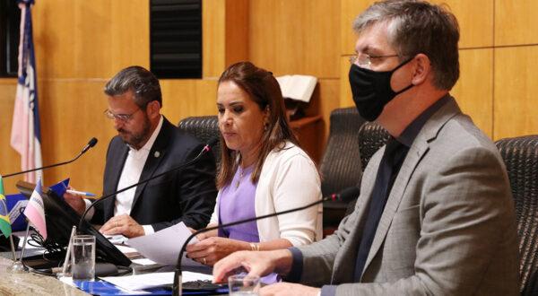 Comissão debate potencial de cadeias produtivas agrícolas